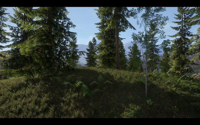 Modelos de árboles y plantas